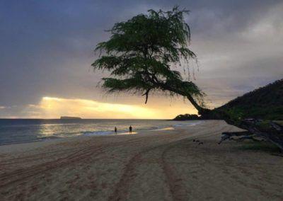 Oahu y Maui